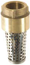 Brass Foot Valve With Stainless Screen
